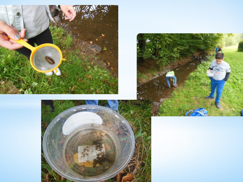 Wasserprojekt-12.jpg